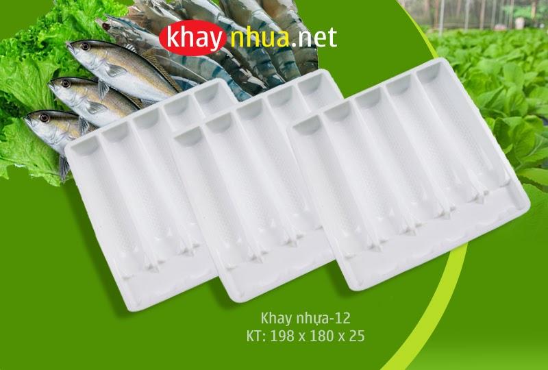 Khay nhựa định hình 12