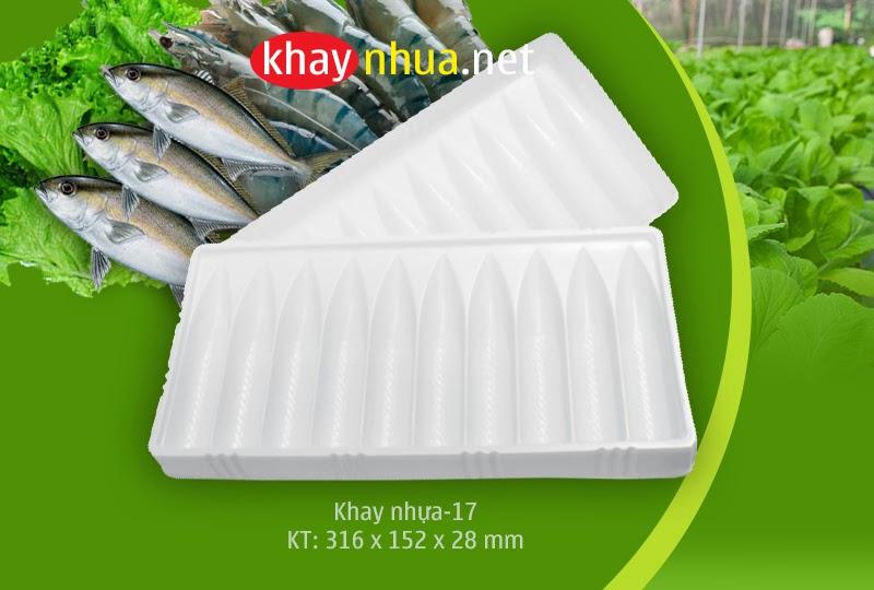 Khay nhựa định hình 17