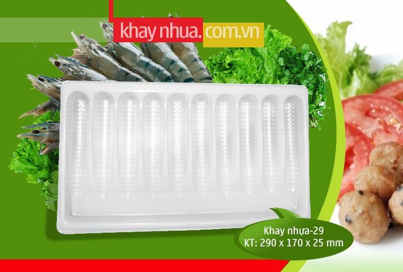 Khay Nhựa định hình 29